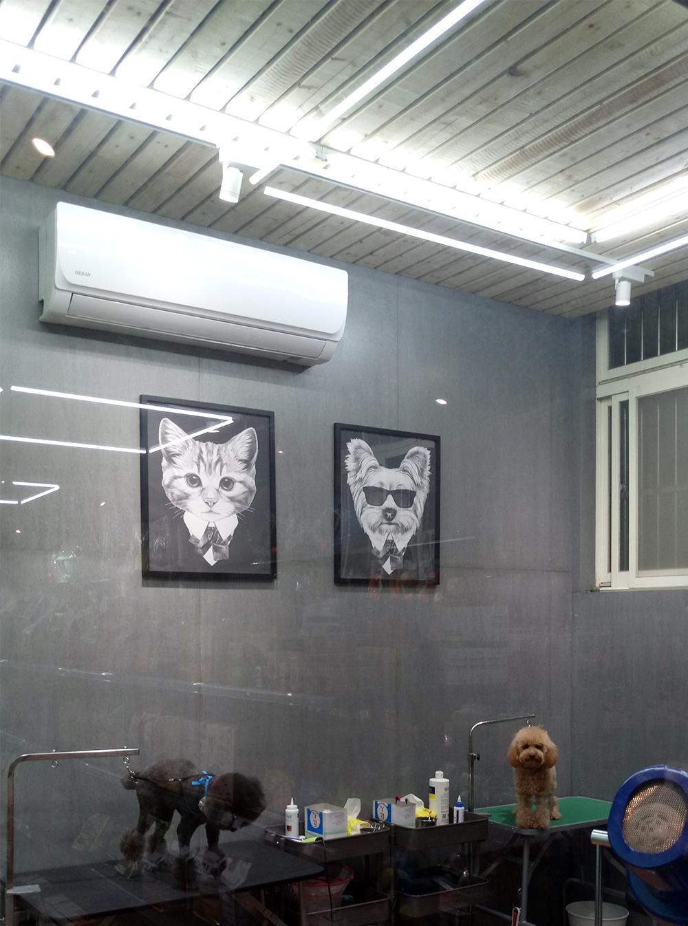 工業風\寵物室\嘟嘟寵物店\觀音區商業空間設計-狗,室內設計,室內裝潢,桃園室內設計,中壢室內設計,雅和室內設計,商空設計